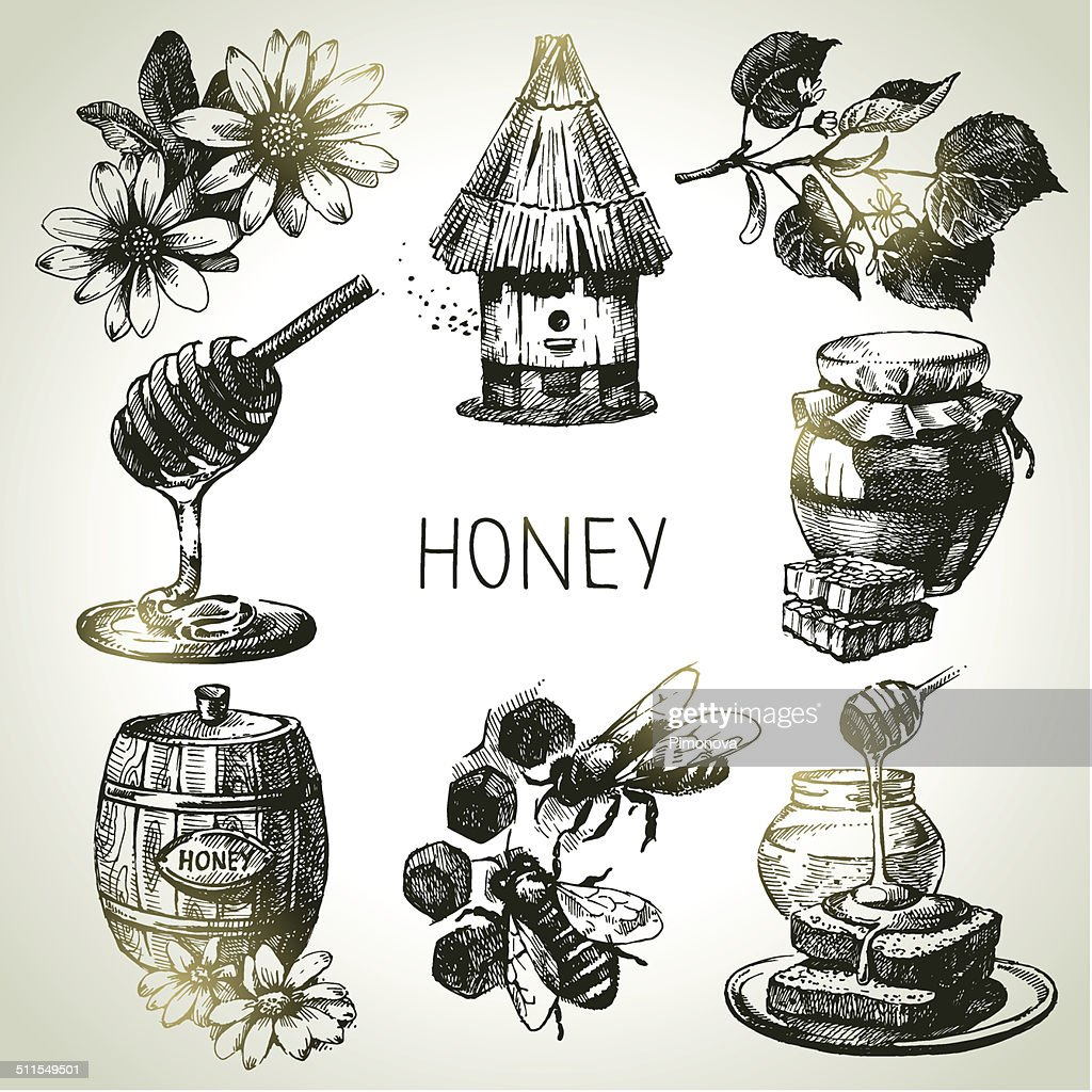 Sketch honey set