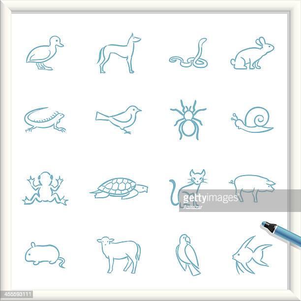 illustrations, cliparts, dessins animés et icônes de croquis icônes-les animaux de compagnie - escargot