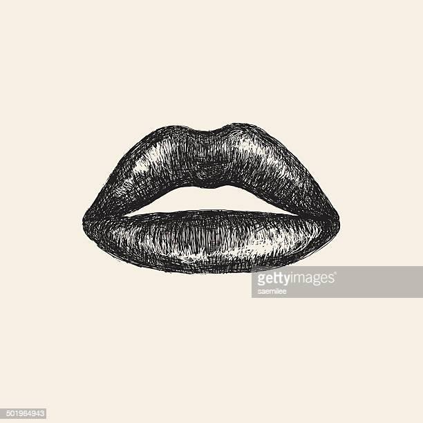 skizze lippen - nahaufnahme stock-grafiken, -clipart, -cartoons und -symbole