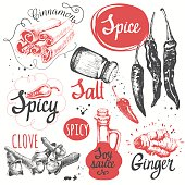 Sketch set with soy sauce, cloves, salt, pepper, cinnamon.