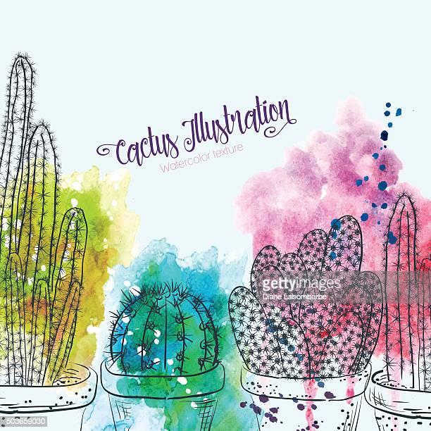 ilustrações, clipart, desenhos animados e ícones de esboços de cactus com luxuosas aquarela. - cacto