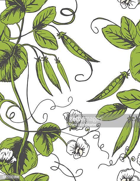 Sketchy Hand Drawn Peas Seamless pattern