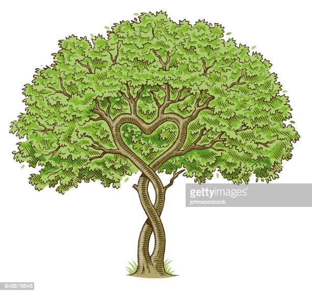 sketchy heart tree drawing - family tree stock illustrations, clip art, cartoons, & icons