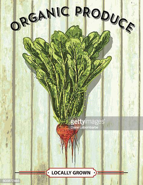 sketchy organic beets on old wood produce sign - agricultural fair stock illustrations, clip art, cartoons, & icons