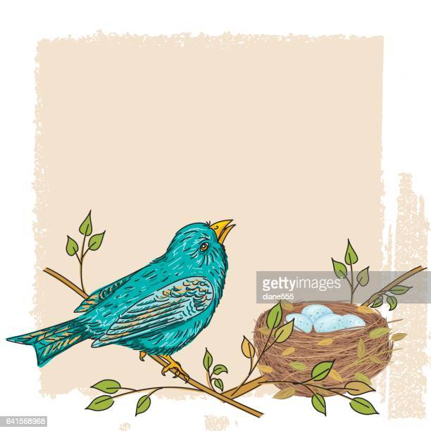 sketchy songbird perched on a branch on textured background - perching stock illustrations