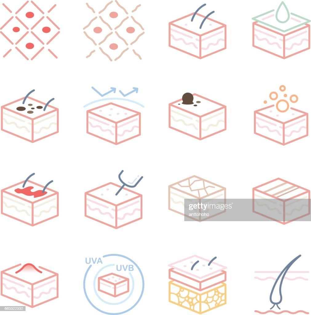 Skin and Dermatology icons set