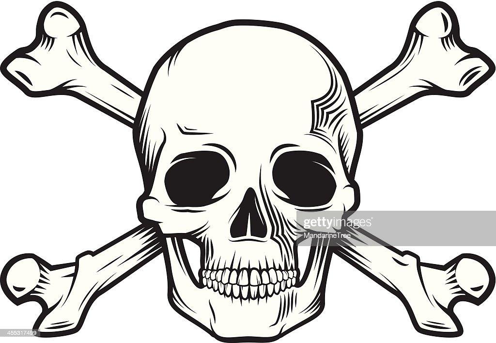 skull and bones : stock illustration