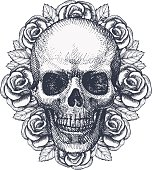 Skull And Roses. Hand Drawn Illustration