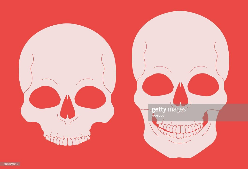 Skull chalk vector clip art