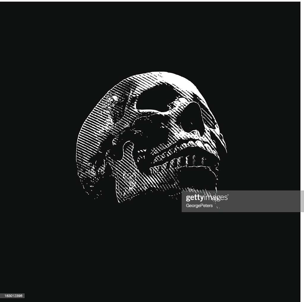 Skull Engraving On Black Background