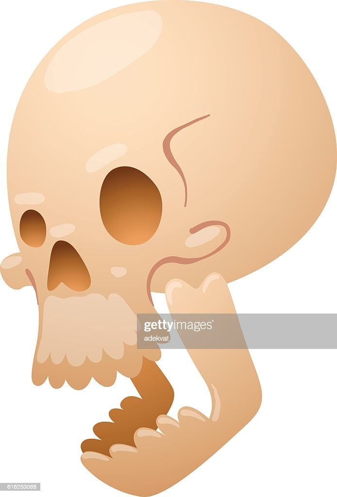 Skull face illustration isolated on white background. : Vector Art