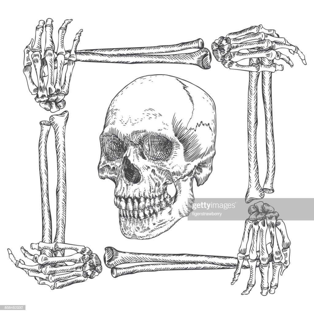 media.gettyimages.com/vectors/skull-in-the-frame-m...