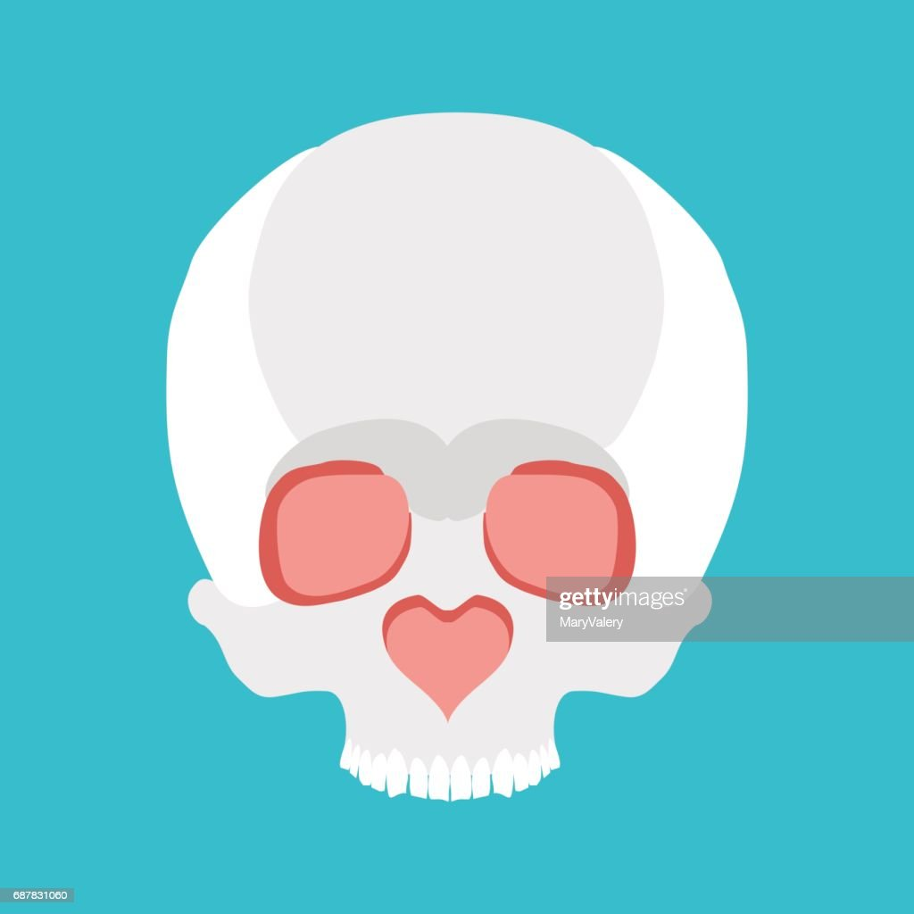 Skull Love Nose Heart Valentines Day Illustration Vector Art Getty