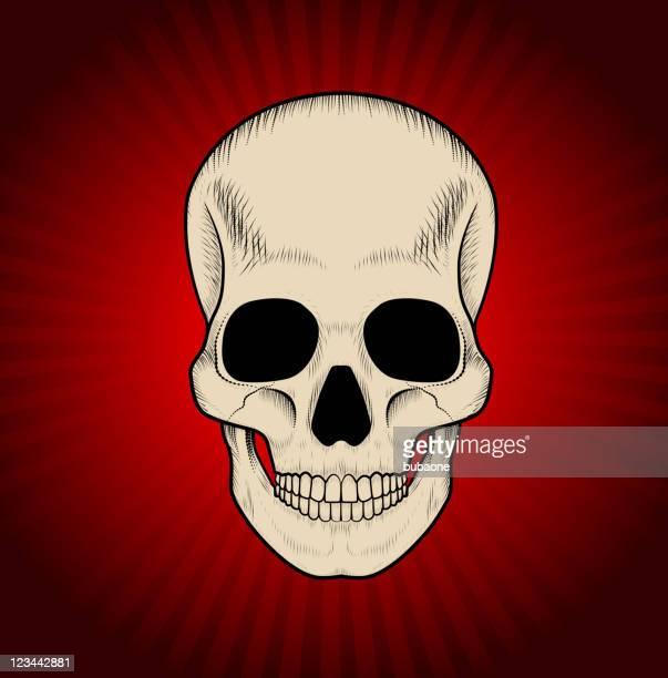 Cráneo sobre fondo rojo vivo