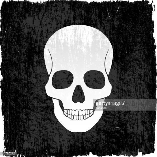 Cráneo en vectoriales sin royalties de fondo