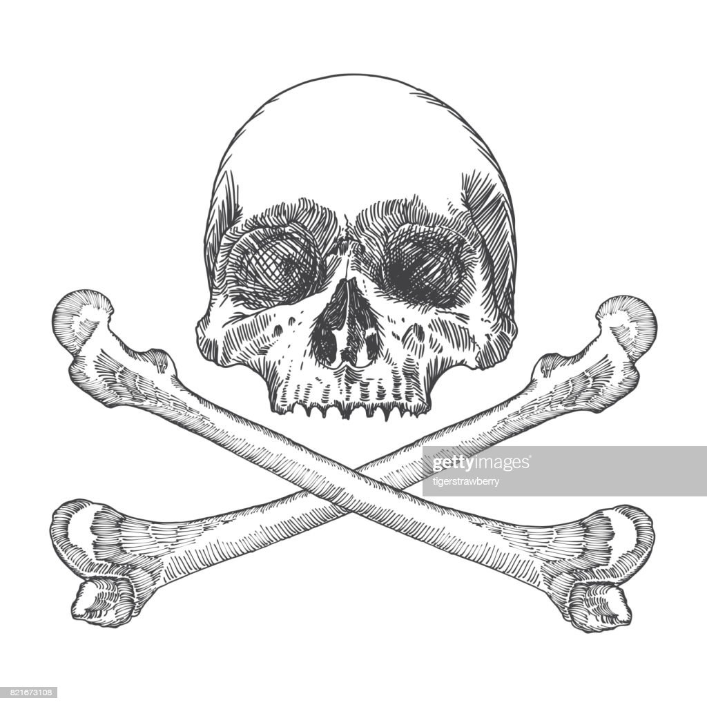 Skull with crossbones. Danger for life and occult witch craft magic symbol. Handmade detailed drawing. Vector illustration.
