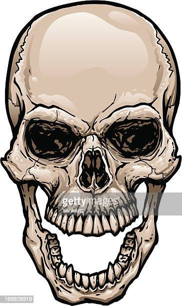 skull with wide open mouth - rotting stock illustrations, clip art, cartoons, & icons