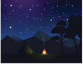 sky, nature, night, forest