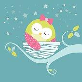 sleeping baby owl