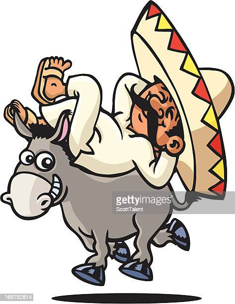 ilustraciones, imágenes clip art, dibujos animados e iconos de stock de dormitorio mexicana - donkey