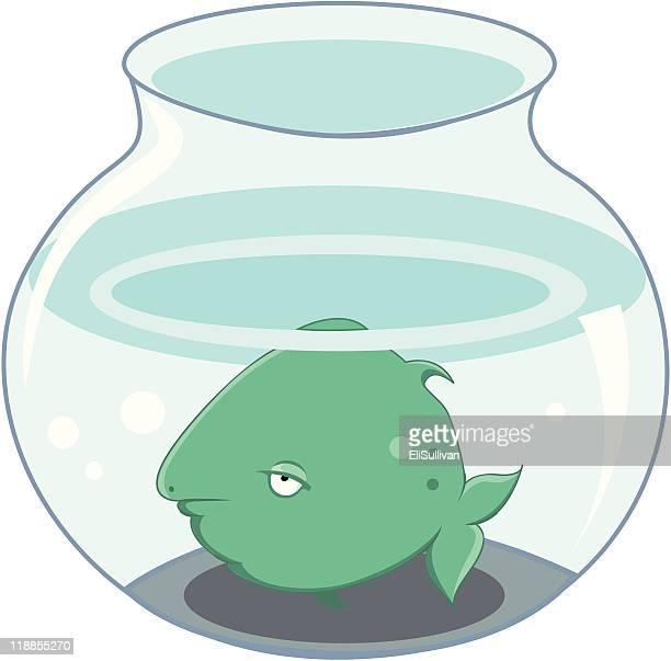 sleepy fish in a bowl - fishbowl stock illustrations, clip art, cartoons, & icons