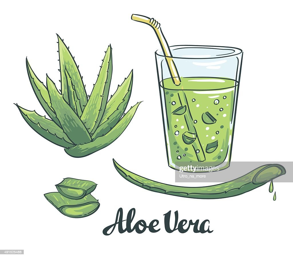 Slices of Aloe Vera in a glass.