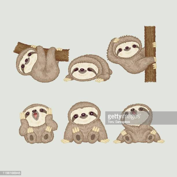 sloth of various poses - cute stock illustrations