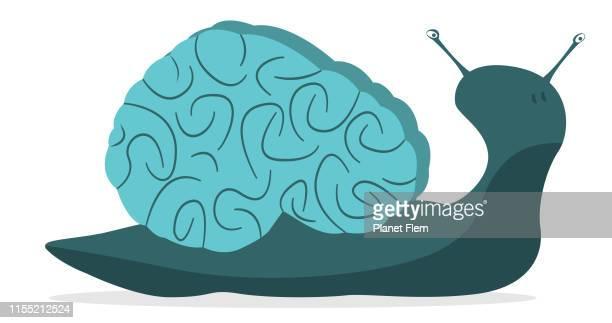 illustrations, cliparts, dessins animés et icônes de cerveau lent - escargot