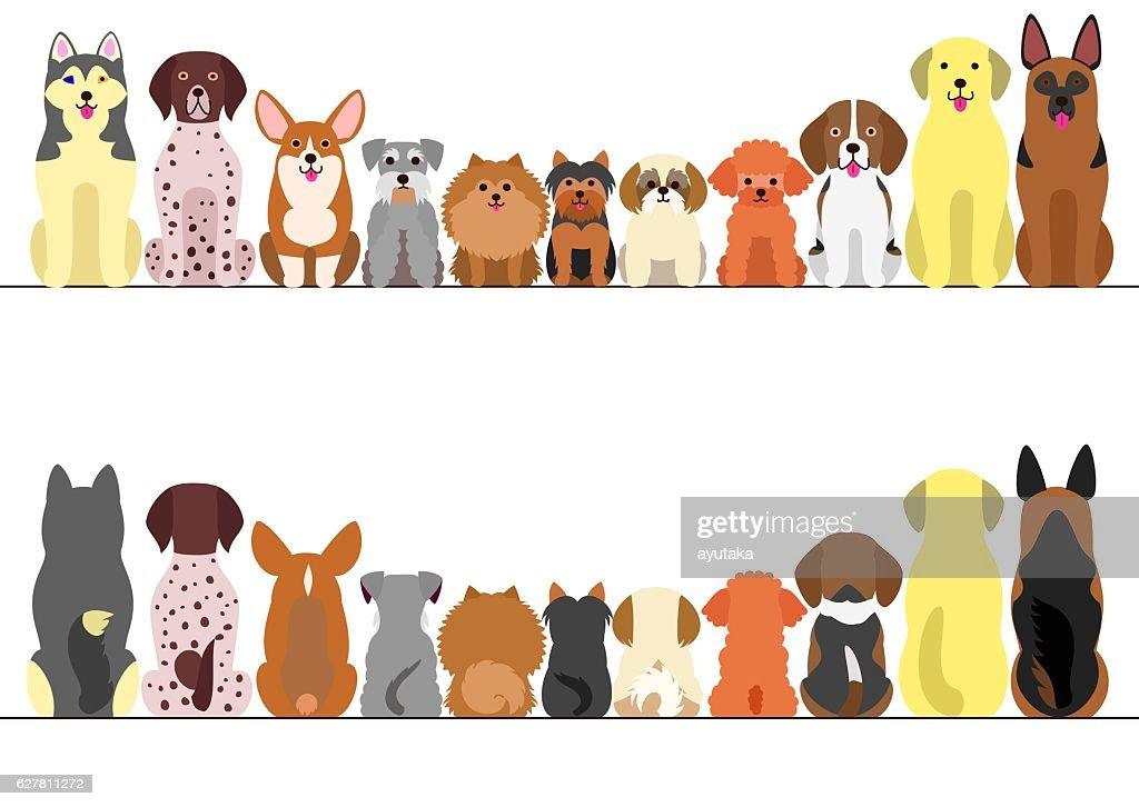 small and large dogs border set, front view and rear view