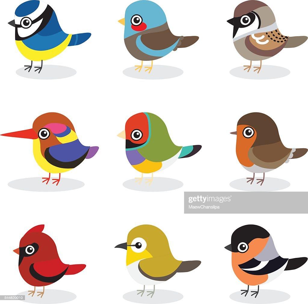 small bird vector collection