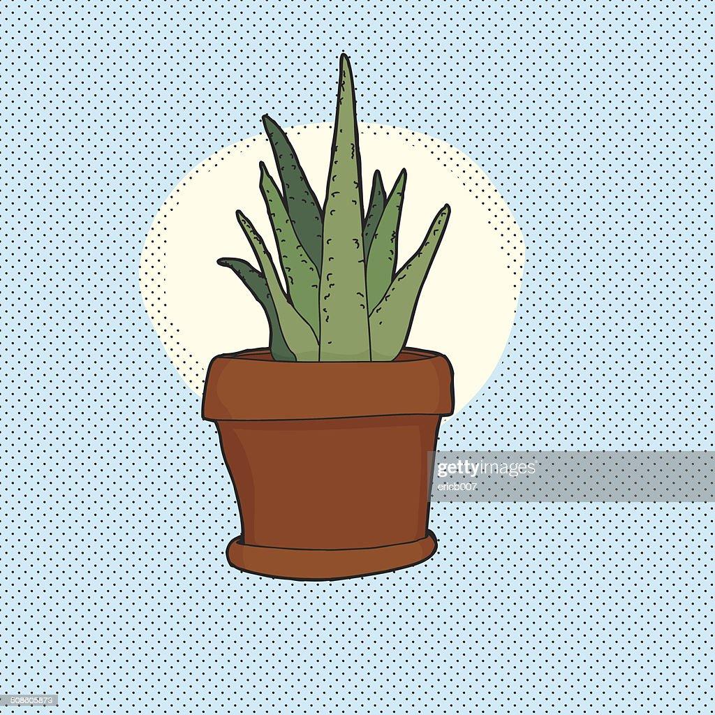 Pequeña Cactus planta de interior : Arte vectorial