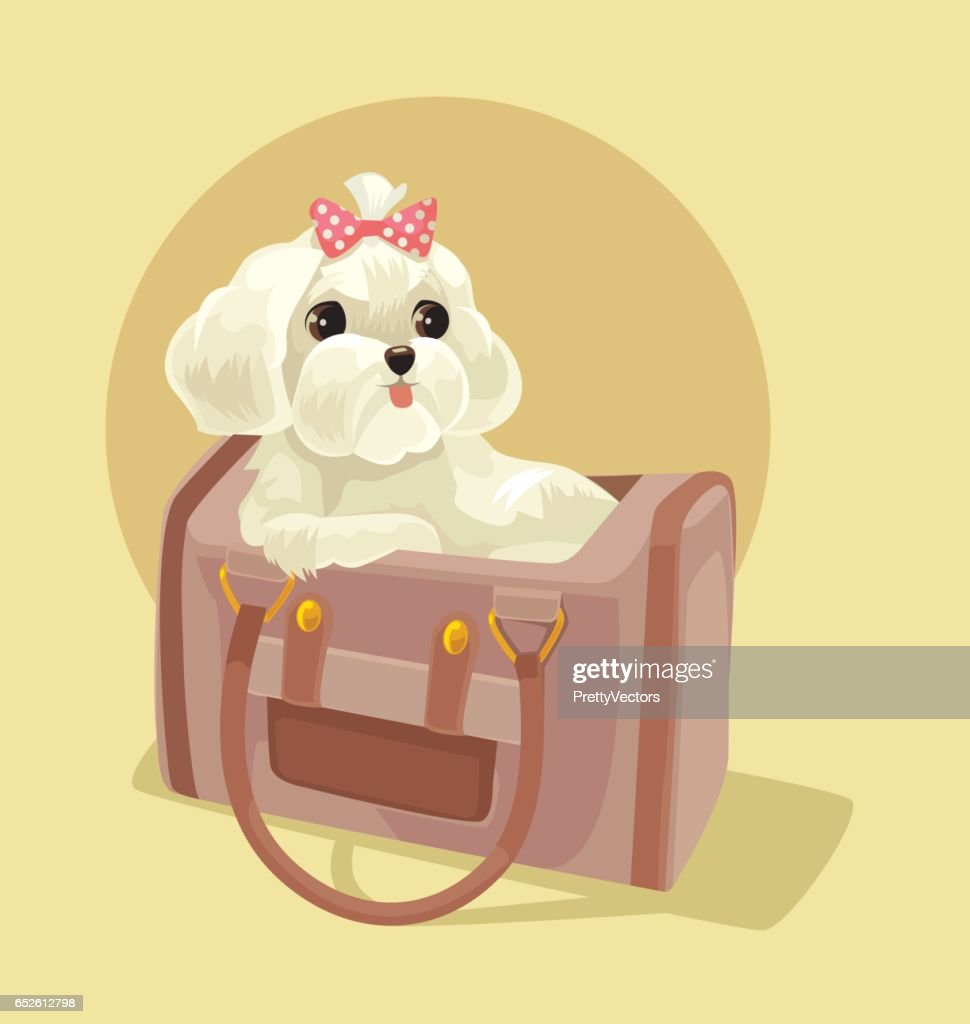 Small dog character sitting in lady bag