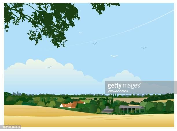 Small English summer landscape