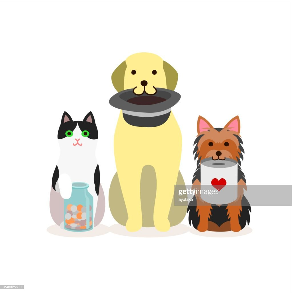 Small group of dogs and cat