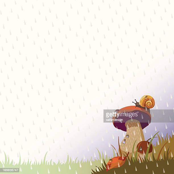 ilustrações de stock, clip art, desenhos animados e ícones de cheiro da chuva e cogumelos - caracol de jardim