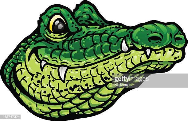 Smiling Alligator Head