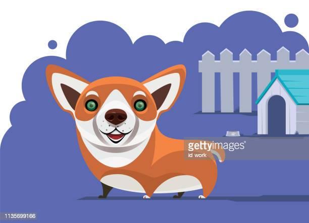ilustraciones, imágenes clip art, dibujos animados e iconos de stock de sonriendo corgi - caseta de perro