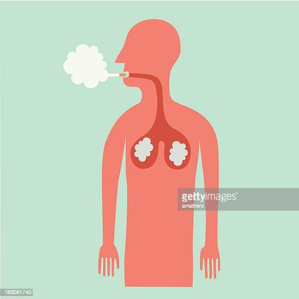smoker - respiratory system stock illustrations, clip art, cartoons, & icons