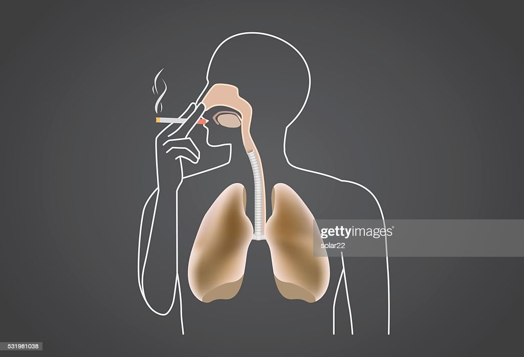 Smoker's lung is black from tar
