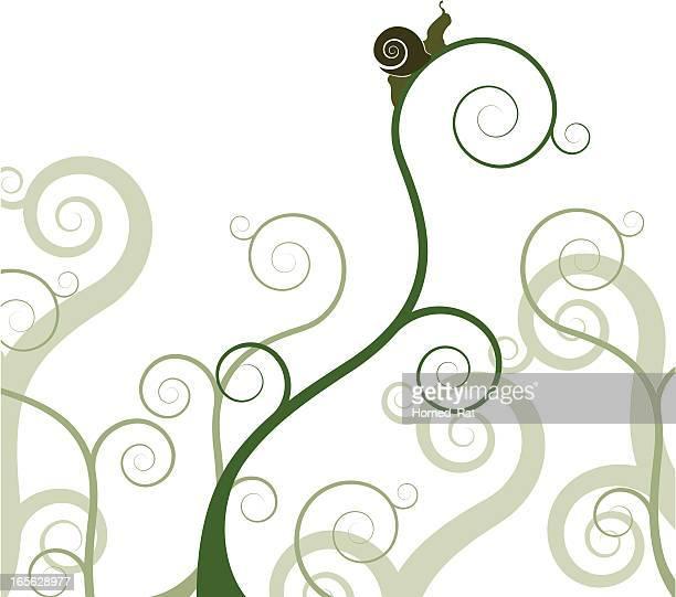 ilustrações de stock, clip art, desenhos animados e ícones de caracol em uma planta - caracol de jardim