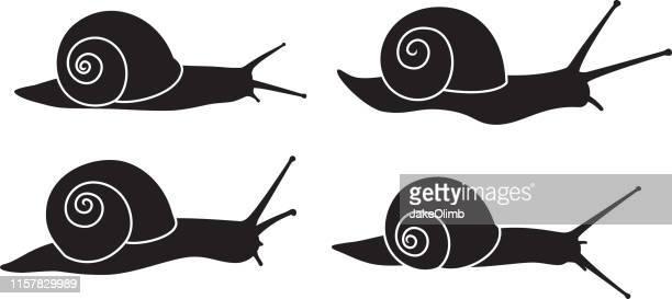 illustrations, cliparts, dessins animés et icônes de silhouettes d'escargot - escargot
