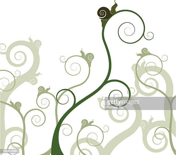 ilustrações de stock, clip art, desenhos animados e ícones de caracóis sobre uma planta - caracol de jardim