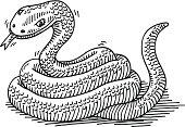 Snake Animal Drawing