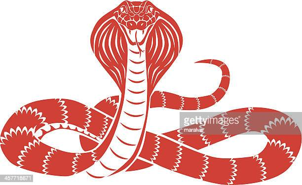 ilustraciones, imágenes clip art, dibujos animados e iconos de stock de serpiente cobra frontal - cobra