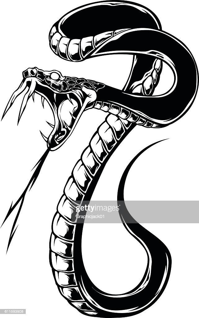 Snake Vector Black color