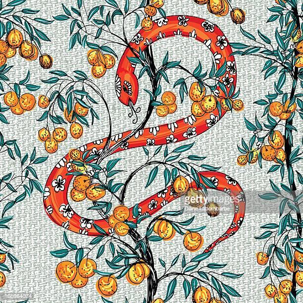 ilustrações de stock, clip art, desenhos animados e ícones de cobra árvores com laranja padrão - laranjeira