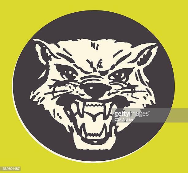 Snarling Hyena
