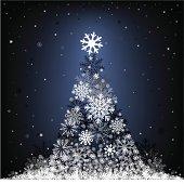 snow fir-tree