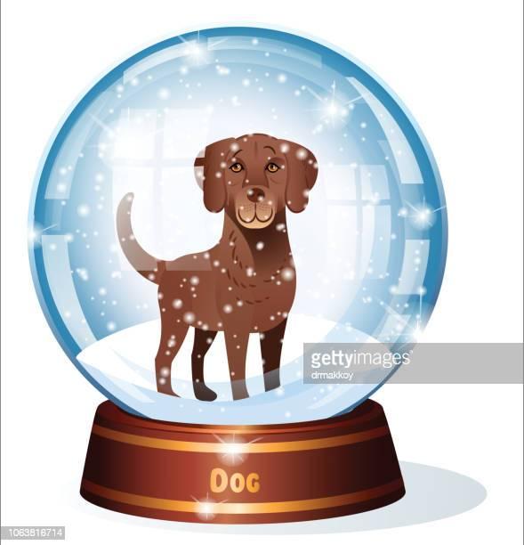 snow globe and dog, chesapeake bay retriever, maryland state - chesapeake bay stock illustrations, clip art, cartoons, & icons