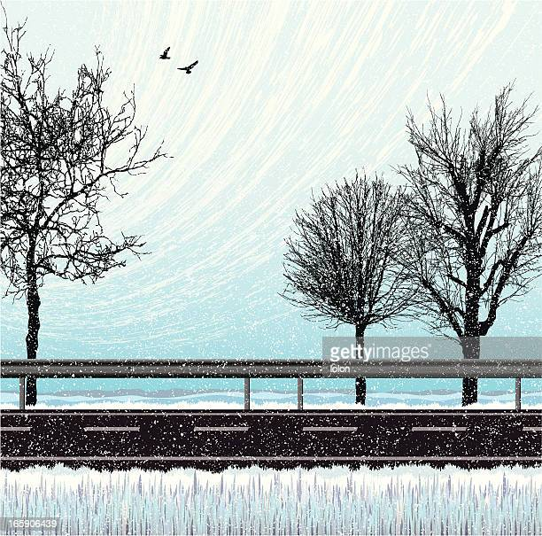 snow, road and trees background - bare tree stock illustrations